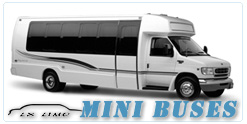 Memphis Mini Bus rental